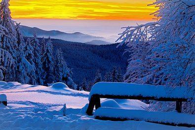 Niedersachsen, Harz. Abendstimmung im Nationalpark Harz.