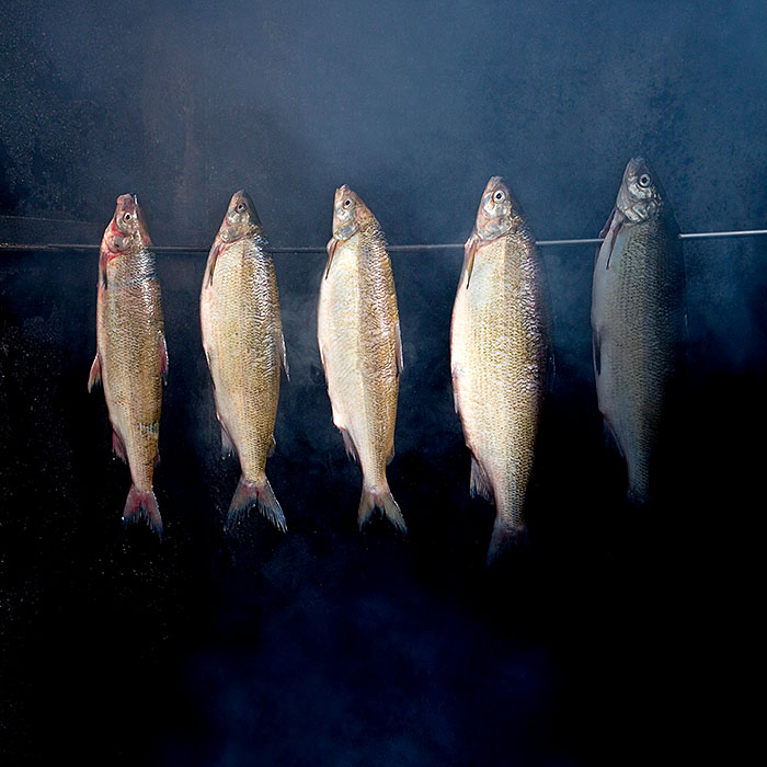Food, Foodfotografie Norddeutschland. Fische im Rauch