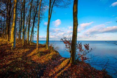 Schleswig-Holstein, Ostseeküste, Brodtener Steilufer im Herbst. Foto: Ingo Wandmacher