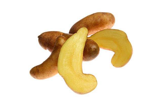 Raritäten mit Biss. Food, Gemüse, Kortoffelsorte, Mandelkartoffel