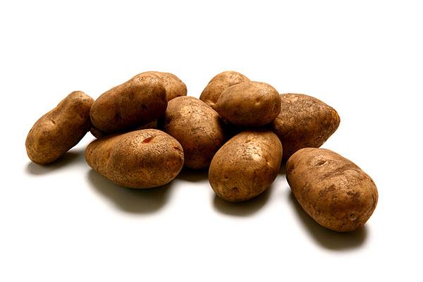 Raritäten mit Biss. Food, Gemüse, Kartoffelsorte Linda